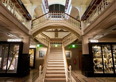 Manchester Museum at University of Manchester
